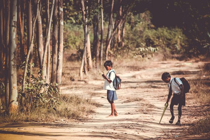 Assam Records Highest Dropout Rate in Primary and Secondary Education in India