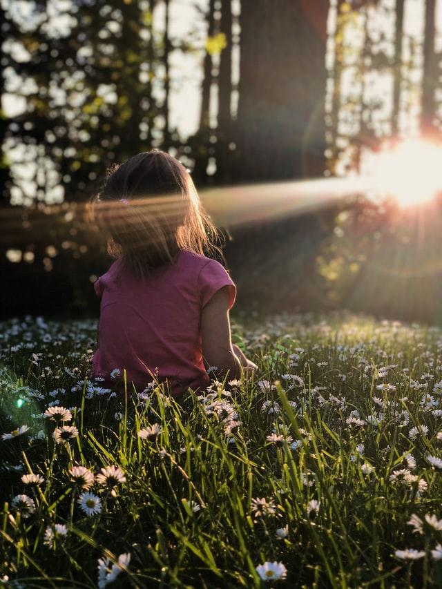 Vitamin D and Immunity: The Sunshine Vitamin